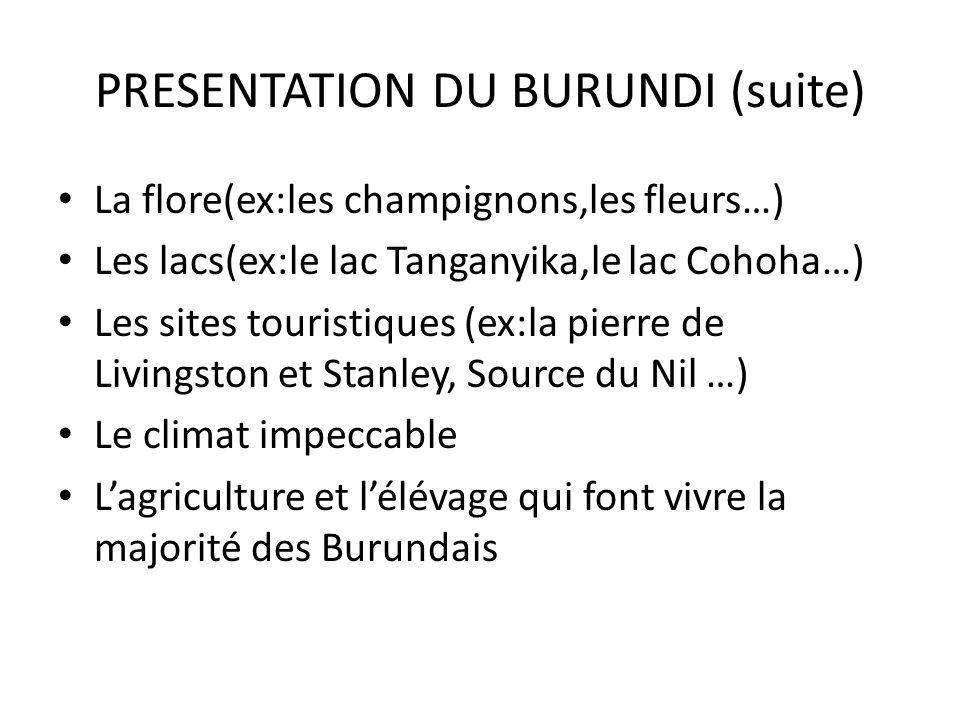 PRESENTATION DU BURUNDI (suite)