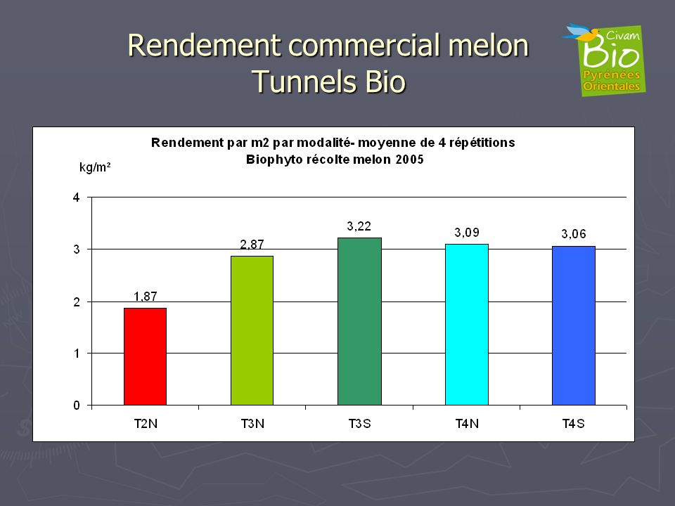 Rendement commercial melon Tunnels Bio
