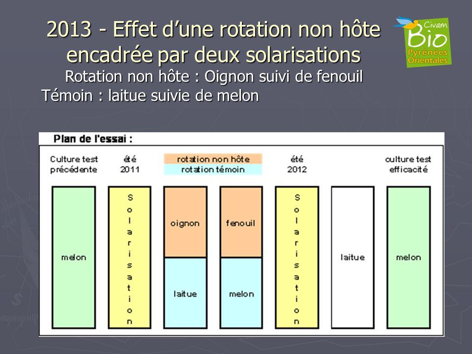 2013 - Effet d'une rotation non hôte encadrée par deux solarisations