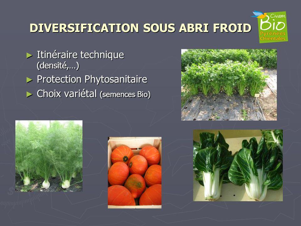 DIVERSIFICATION SOUS ABRI FROID