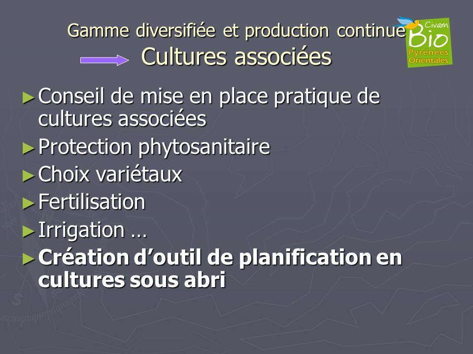 Gamme diversifiée et production continue Cultures associées