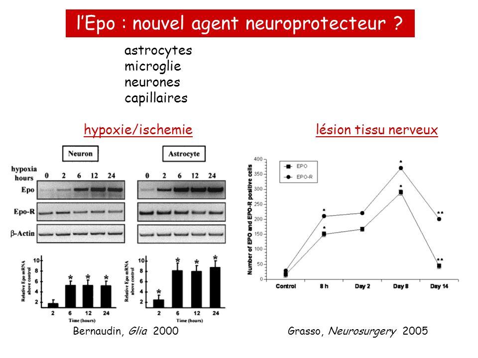 l'Epo : nouvel agent neuroprotecteur