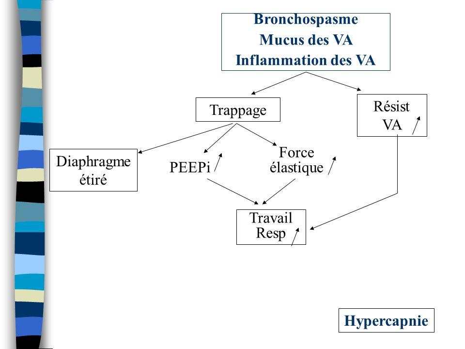 Bronchospasme Mucus des VA. Inflammation des VA. Résist VA. Trappage. Force élastique. Diaphragme étiré.