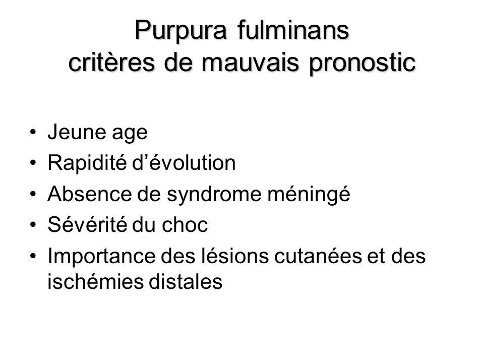 Purpura fulminans critères de mauvais pronostic