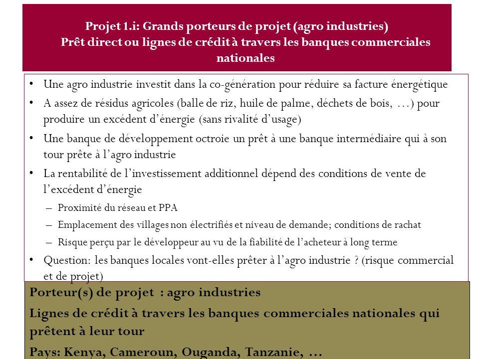 Porteur(s) de projet : agro industries