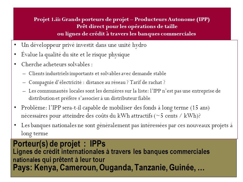 Porteur(s) de projet : IPPs