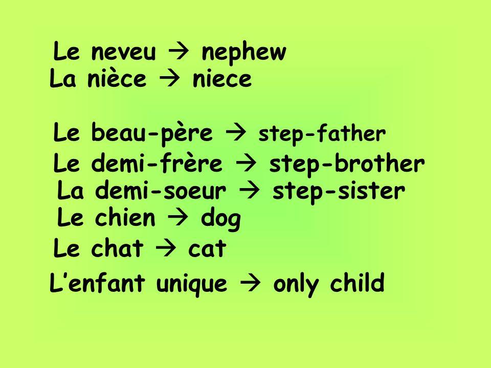 Le neveu  nephewLa nièce  niece. Le beau-père  step-father. Le demi-frère  step-brother. La demi-soeur  step-sister.