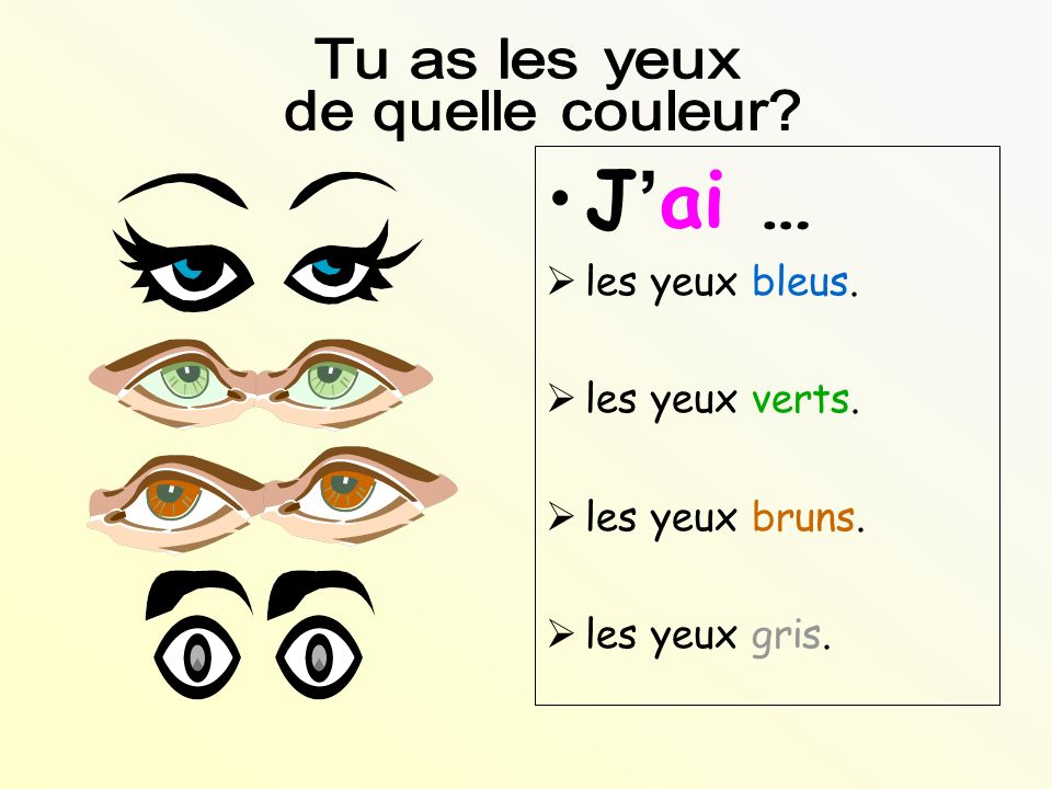 J'ai … Tu as les yeux de quelle couleur les yeux bleus.