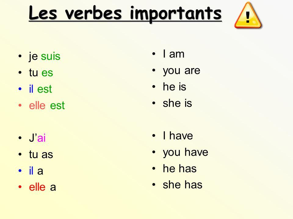 Les verbes importants I am je suis you are tu es he is il est she is