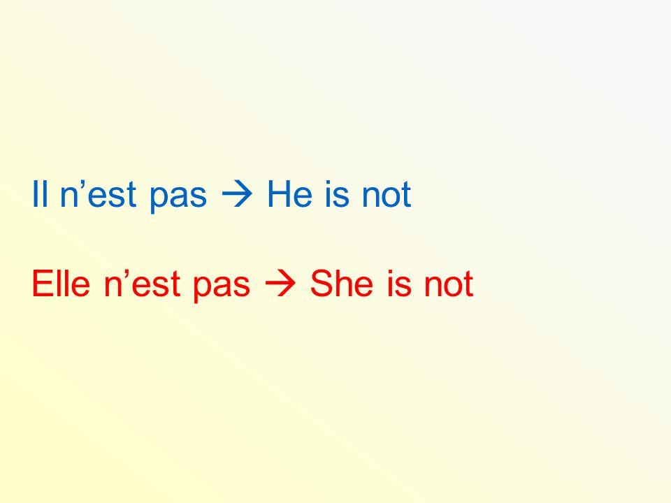 Il n'est pas  He is not Elle n'est pas  She is not