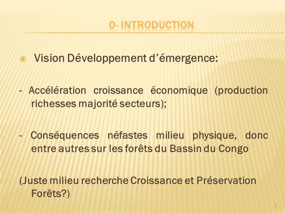 Vision Développement d'émergence: