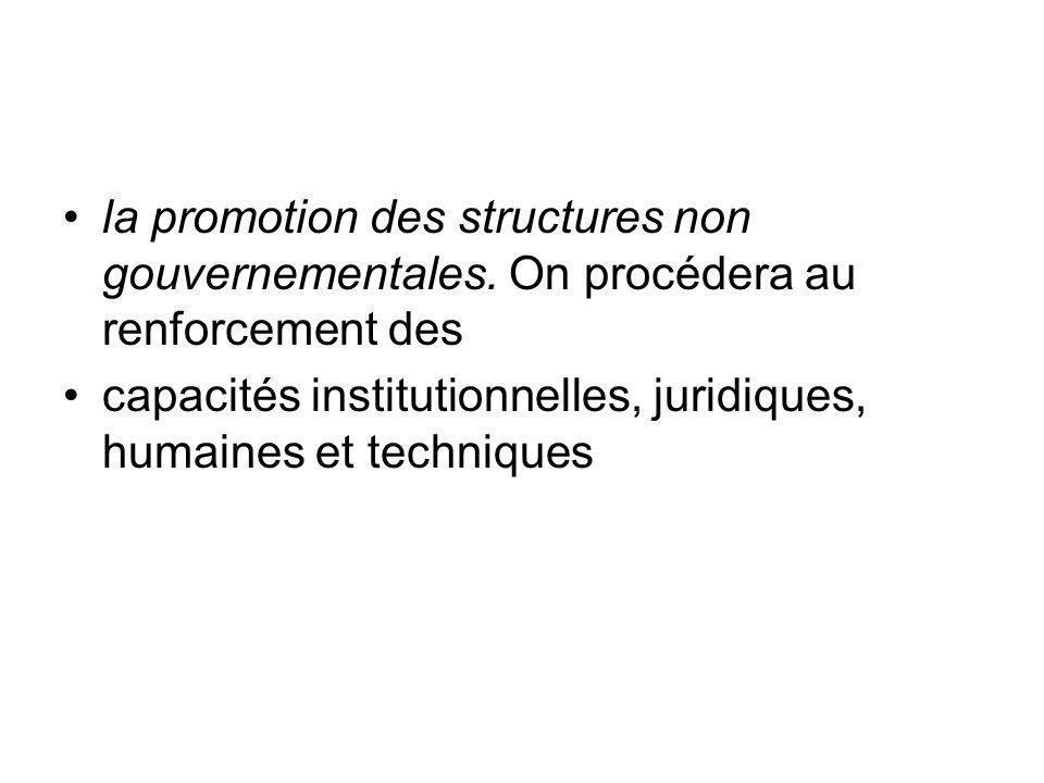 la promotion des structures non gouvernementales