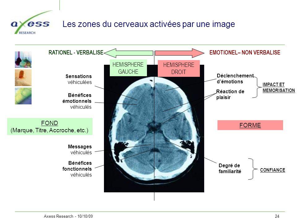 Les zones du cerveaux activées par une image