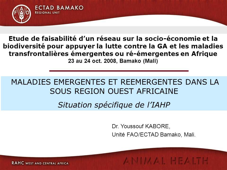 Situation spécifique de l'IAHP