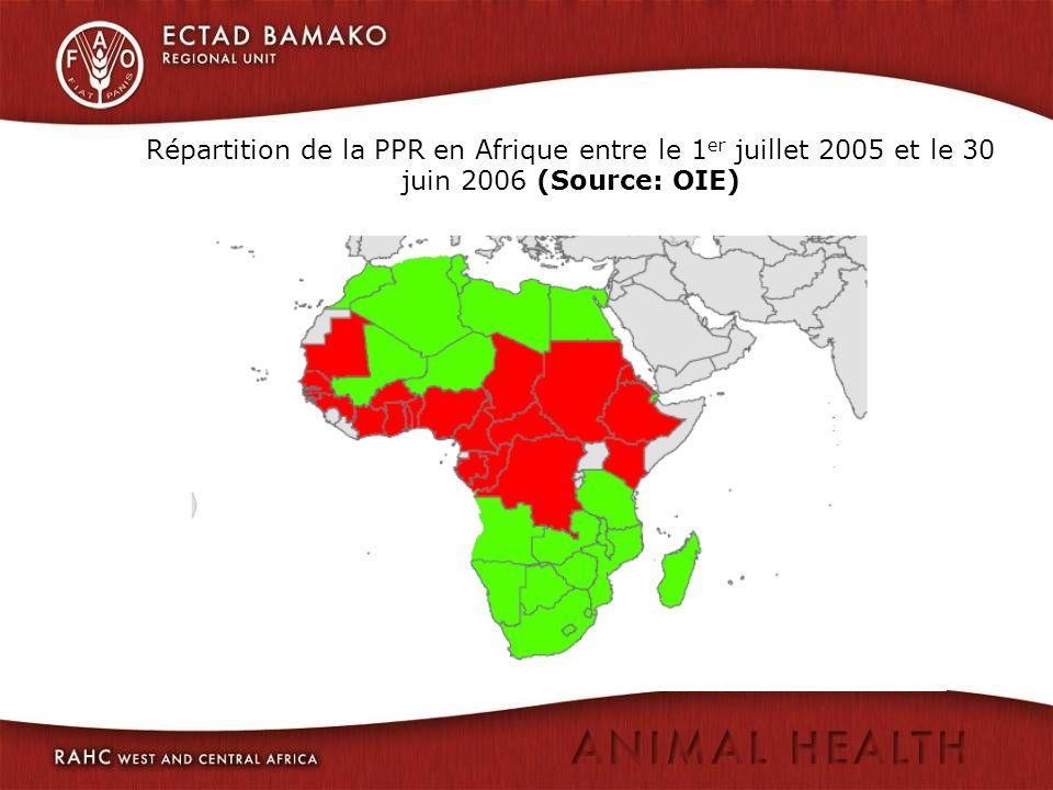 Répartition de la PPR en Afrique entre le 1er juillet 2005 et le 30 juin 2006 (Source: OIE)