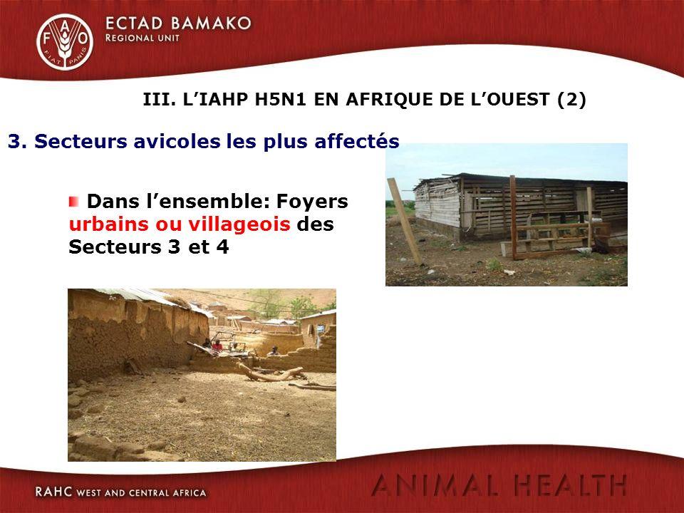 III. L'IAHP H5N1 EN AFRIQUE DE L'OUEST (2)