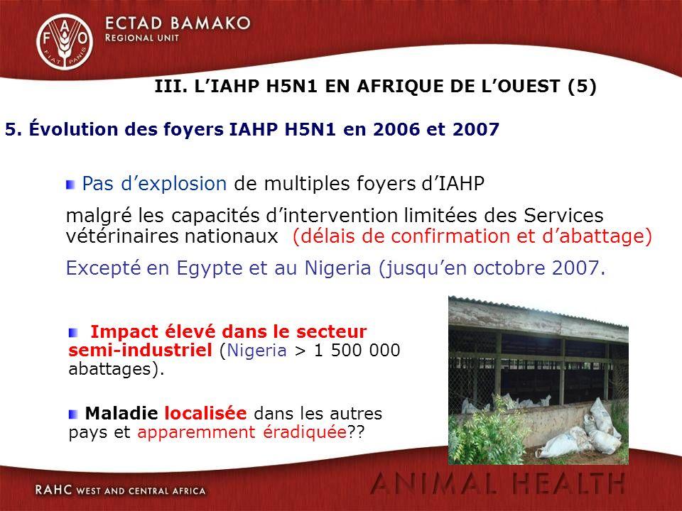 III. L'IAHP H5N1 EN AFRIQUE DE L'OUEST (5)