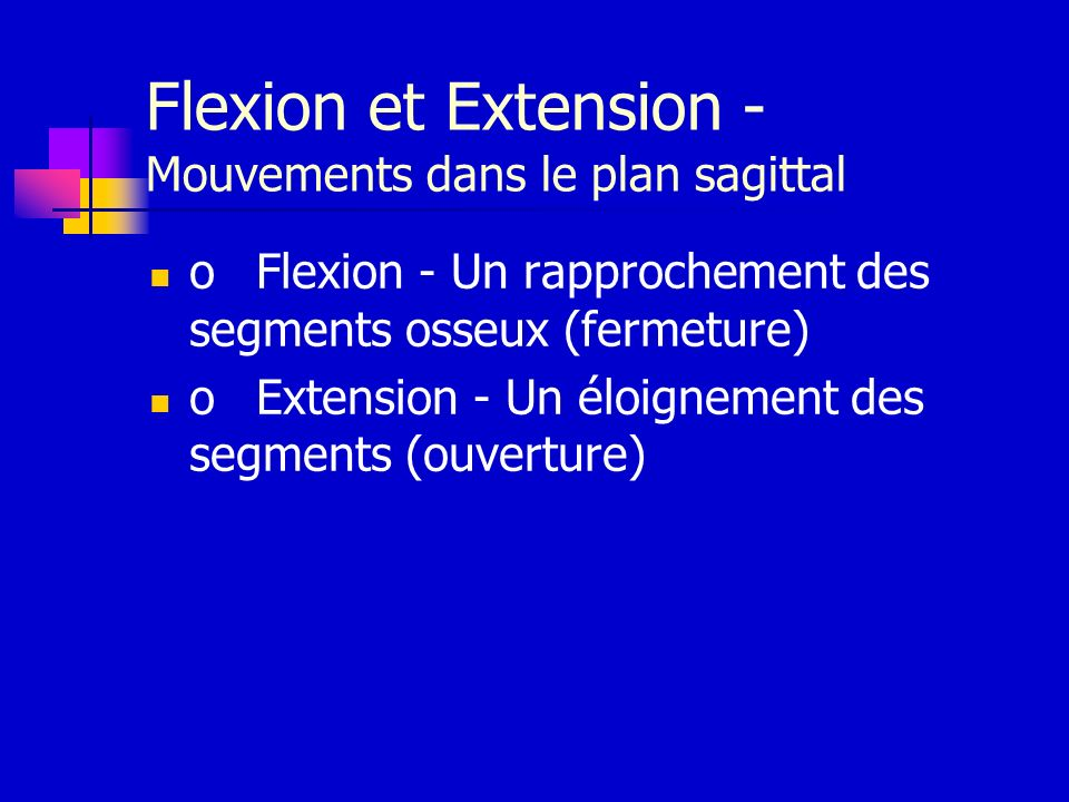 Flexion et Extension - Mouvements dans le plan sagittal
