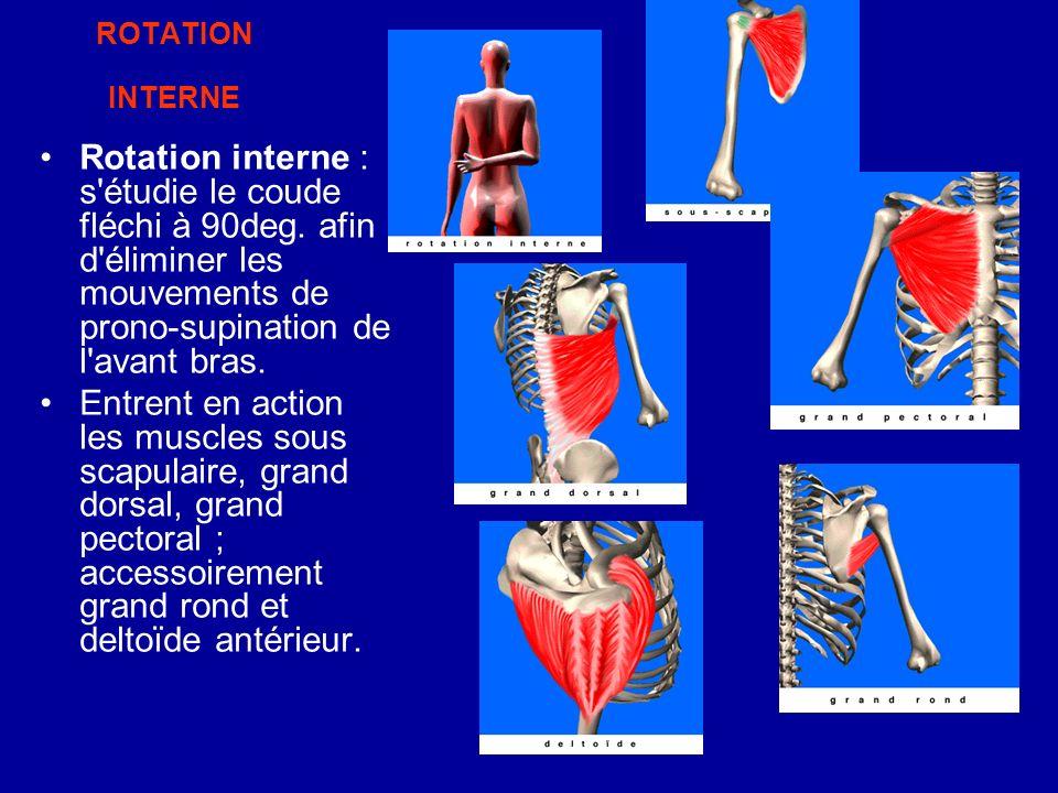 ROTATION INTERNE Rotation interne : s étudie le coude fléchi à 90deg. afin d éliminer les mouvements de prono-supination de l avant bras.