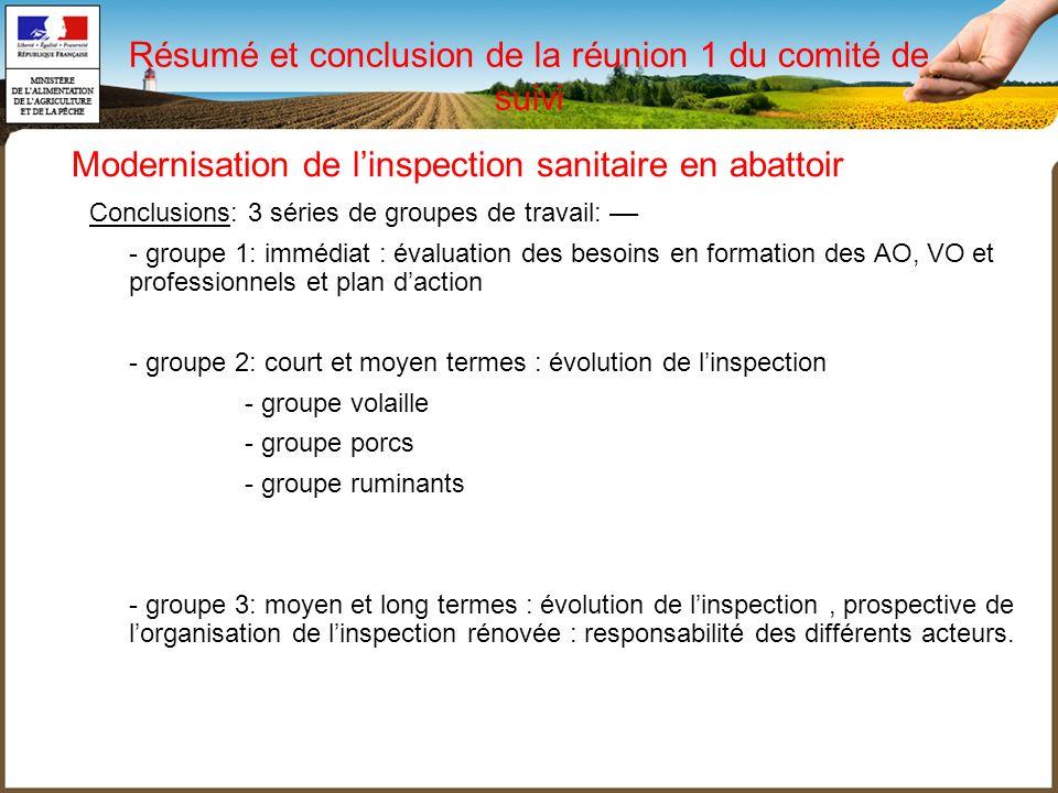 Résumé et conclusion de la réunion 1 du comité de suivi