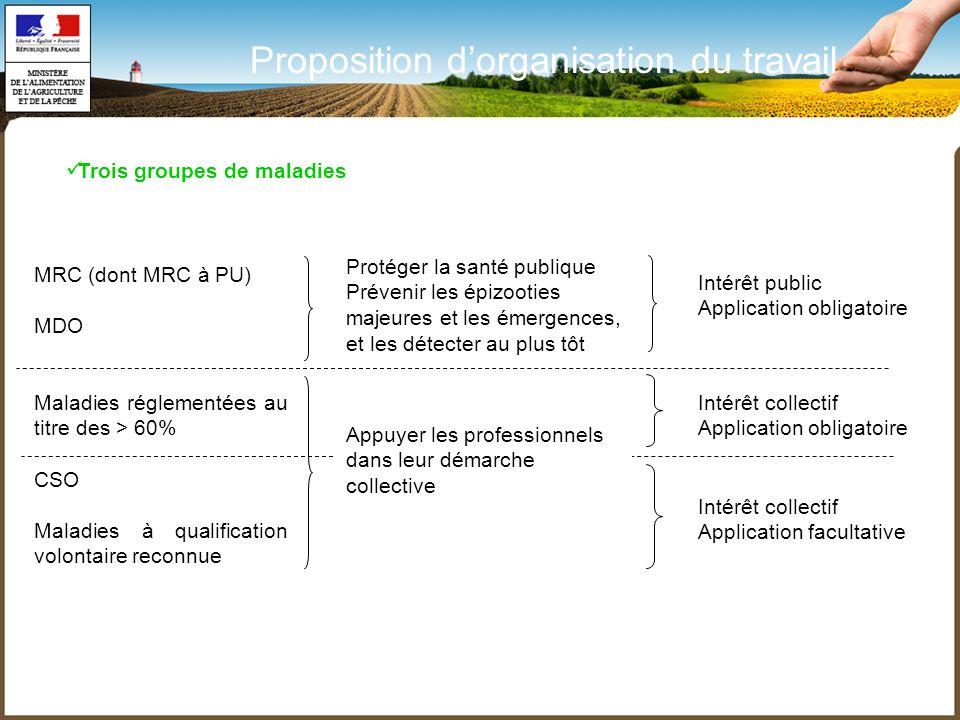 Proposition d'organisation du travail