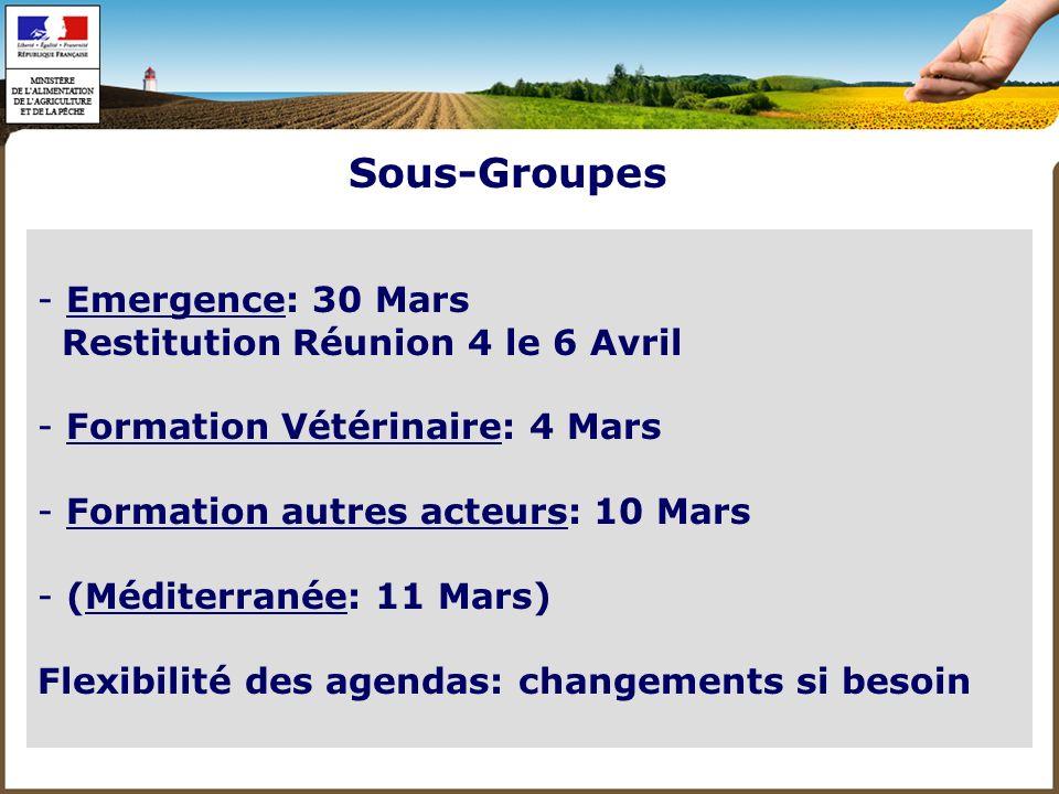 Sous-Groupes Emergence: 30 Mars Restitution Réunion 4 le 6 Avril