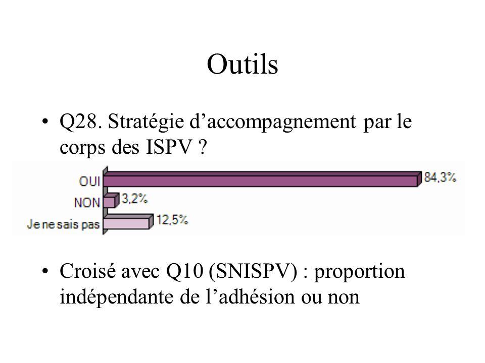 Outils Q28. Stratégie d'accompagnement par le corps des ISPV