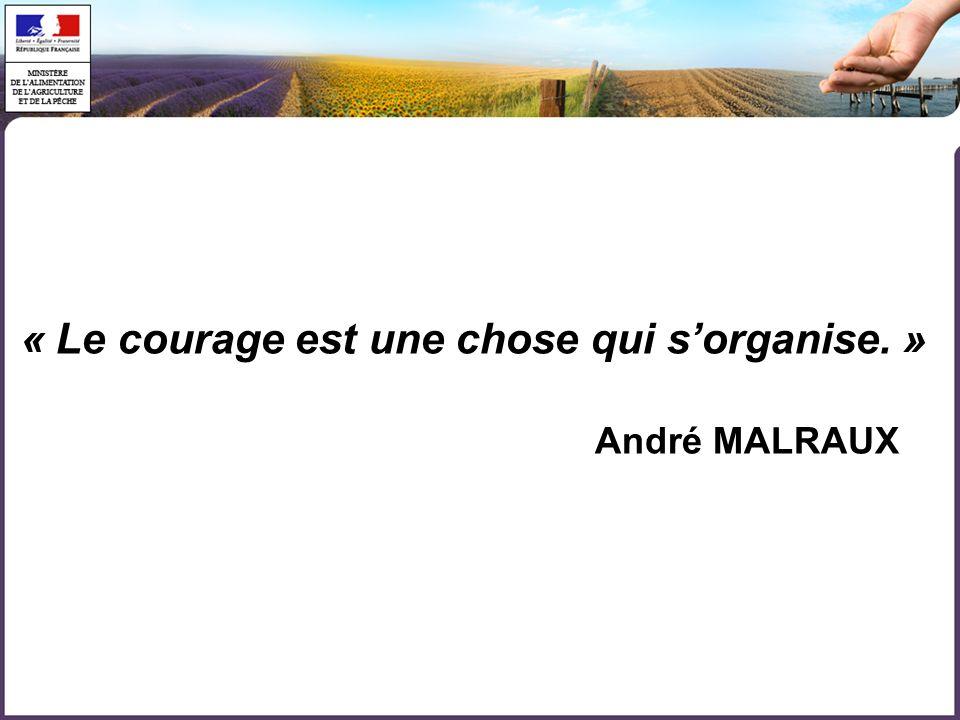 « Le courage est une chose qui s'organise. »