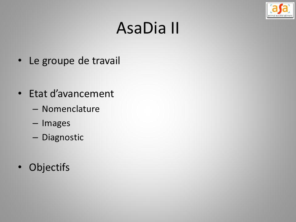 AsaDia II Le groupe de travail Etat d'avancement Objectifs