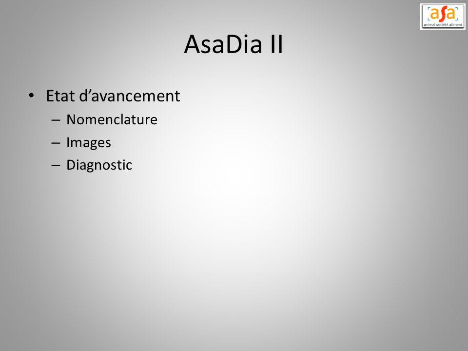 AsaDia II Etat d'avancement Nomenclature Images Diagnostic