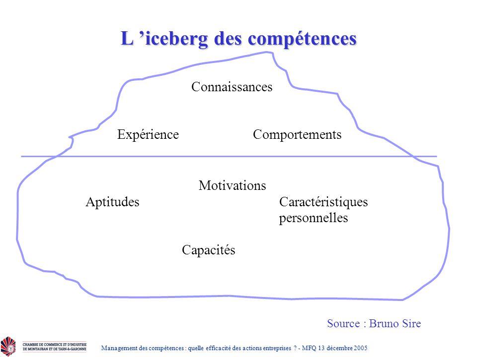 L 'iceberg des compétences