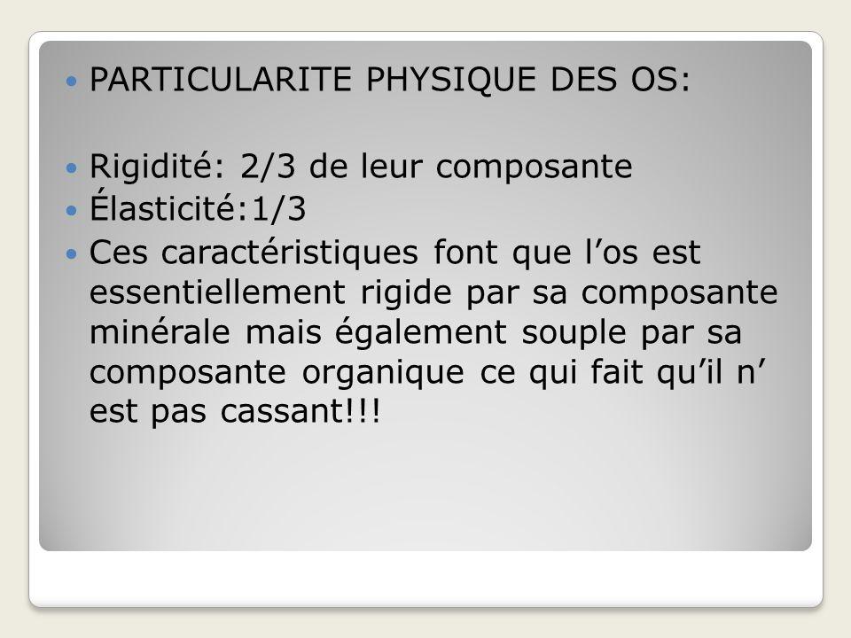 PARTICULARITE PHYSIQUE DES OS: