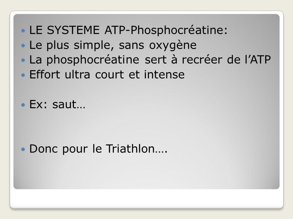LE SYSTEME ATP-Phosphocréatine:
