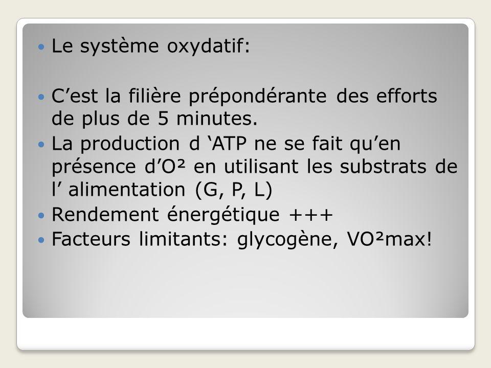 Le système oxydatif: C'est la filière prépondérante des efforts de plus de 5 minutes.