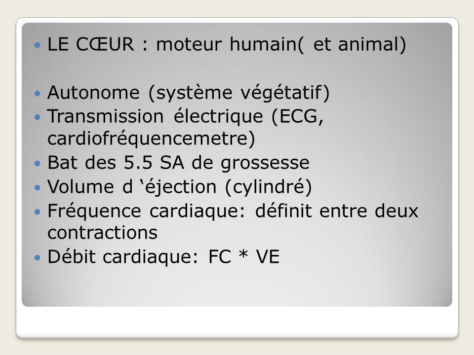 LE CŒUR : moteur humain( et animal)