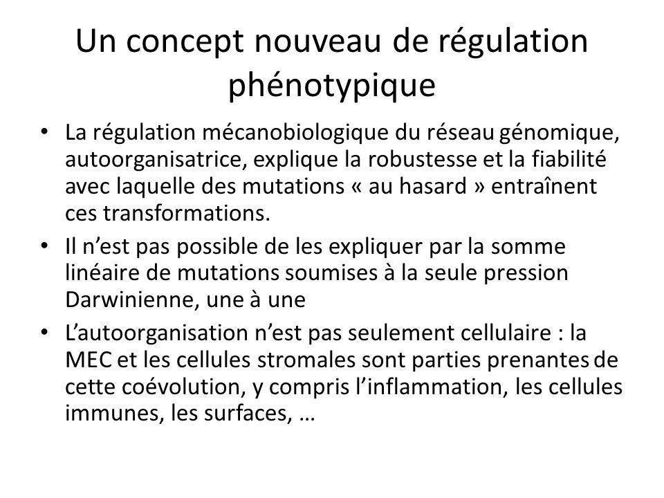 Un concept nouveau de régulation phénotypique