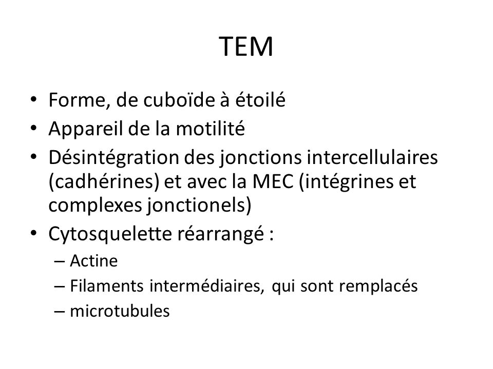 TEM Forme, de cuboïde à étoilé Appareil de la motilité