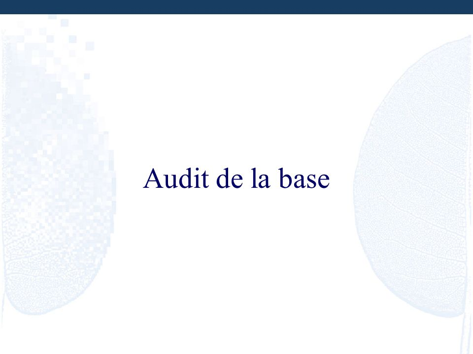 Audit de la base