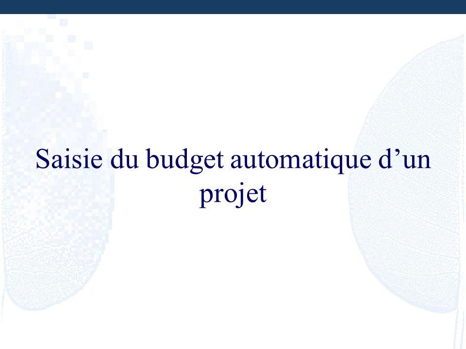 Saisie du budget automatique d'un projet