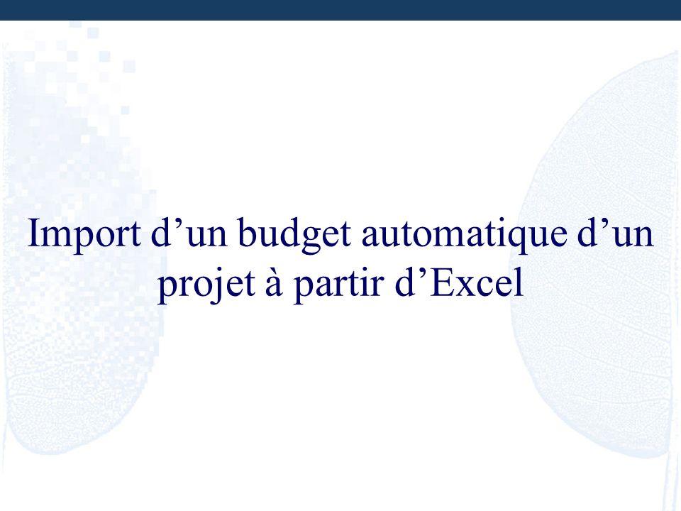 Import d'un budget automatique d'un projet à partir d'Excel