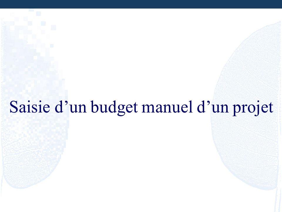 Saisie d'un budget manuel d'un projet
