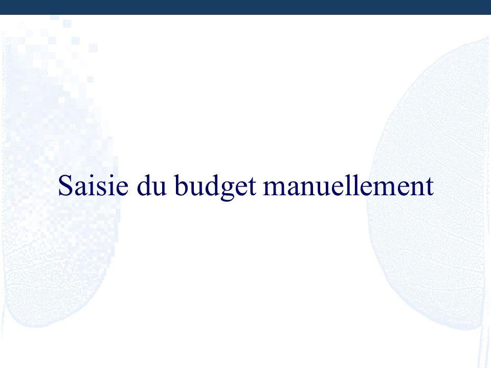 Saisie du budget manuellement