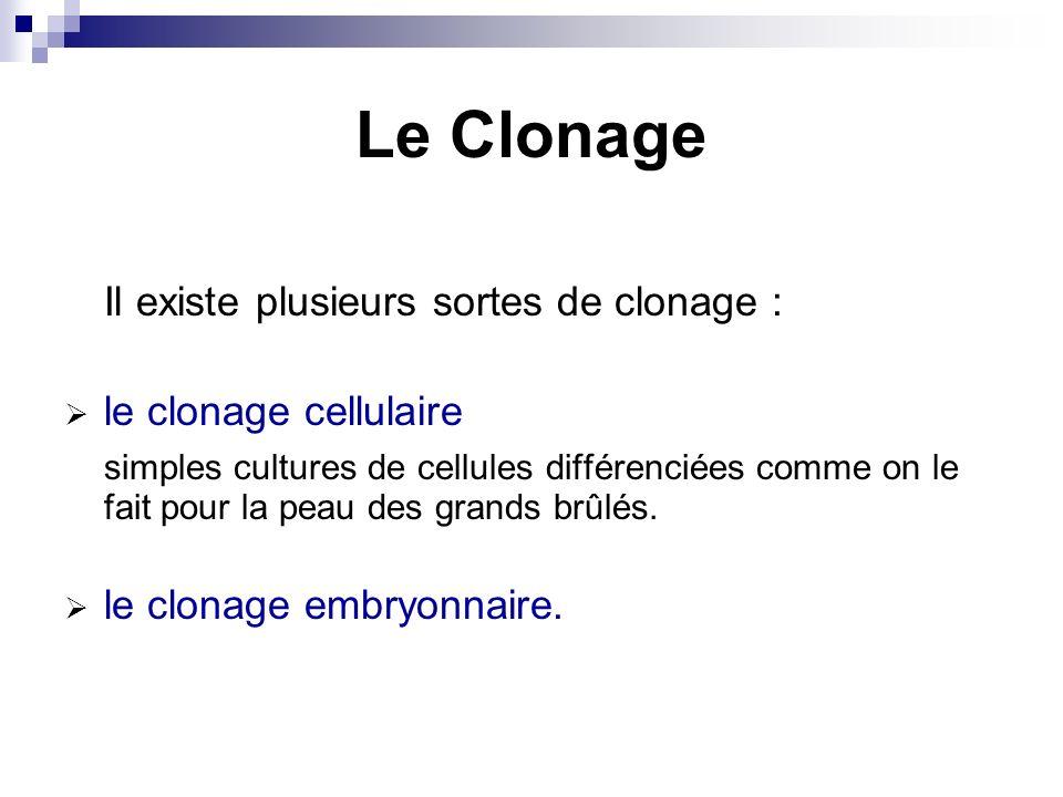 Le Clonage Il existe plusieurs sortes de clonage :