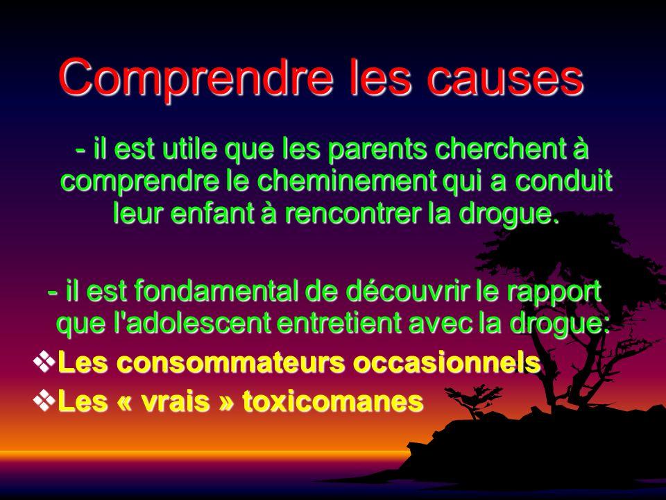 Comprendre les causes - il est utile que les parents cherchent à comprendre le cheminement qui a conduit leur enfant à rencontrer la drogue.