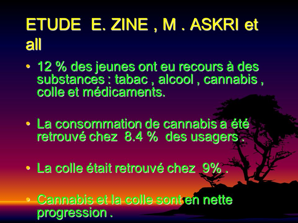 ETUDE E. ZINE , M . ASKRI et all