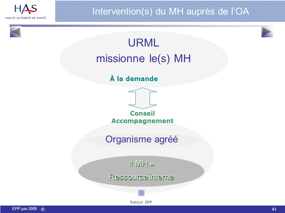 Intervention(s) du MH auprès de l'OA
