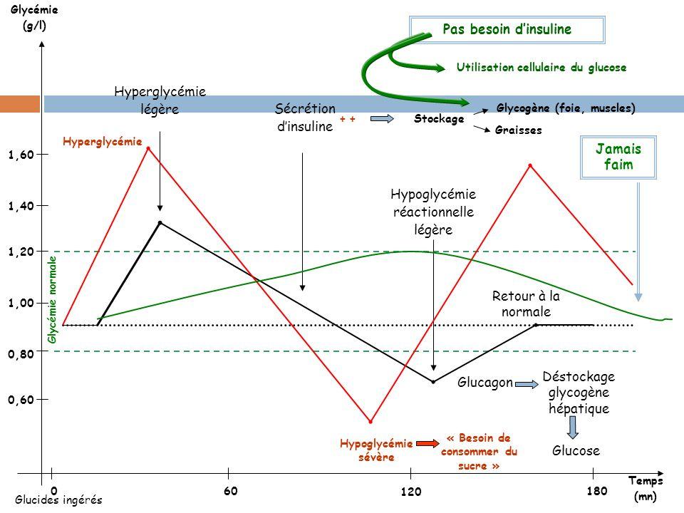 Utilisation cellulaire du glucose « Besoin de consommer du sucre »