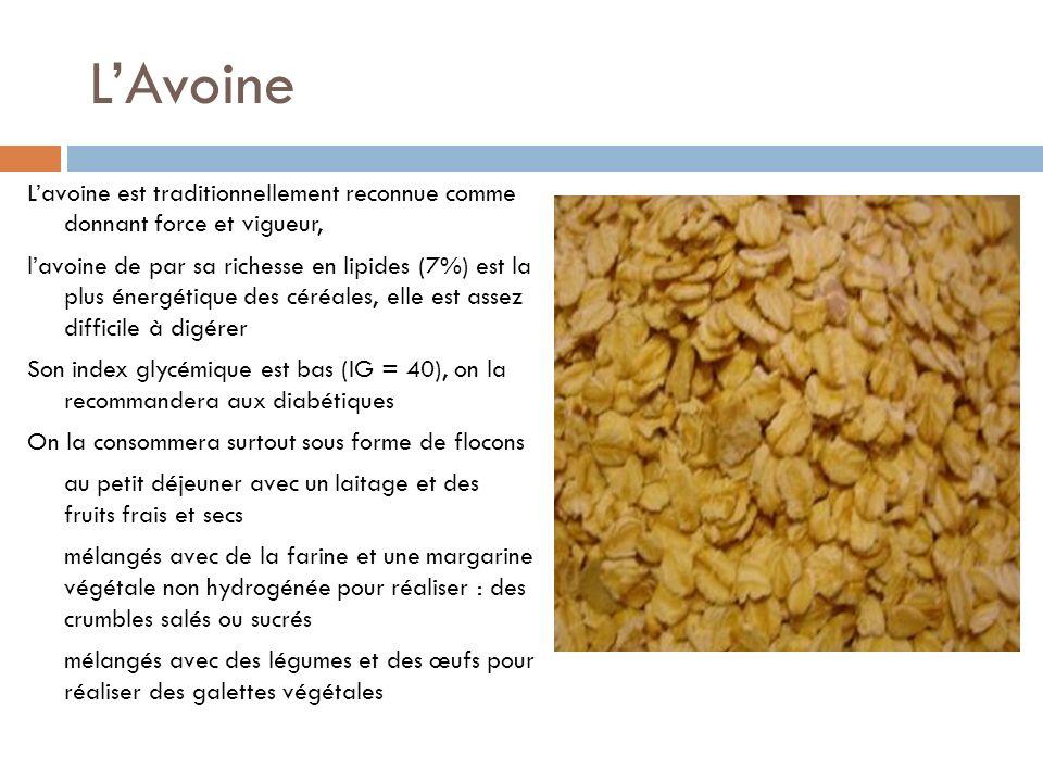 L'Avoine L'avoine est traditionnellement reconnue comme donnant force et vigueur,
