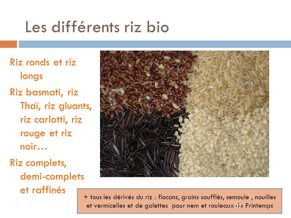 Les différents riz bio Riz ronds et riz longs