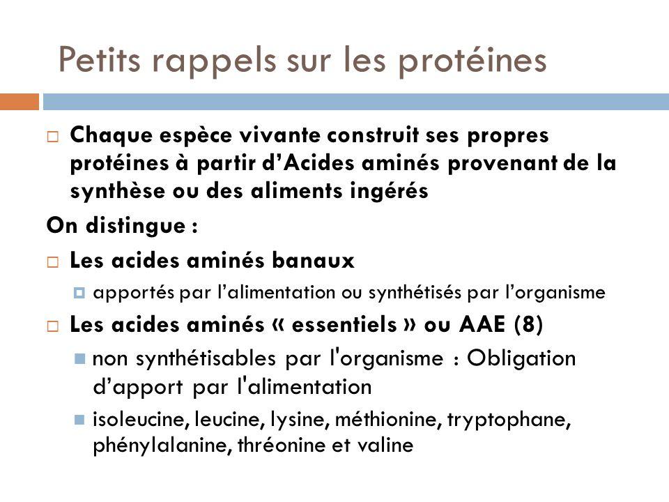 Petits rappels sur les protéines